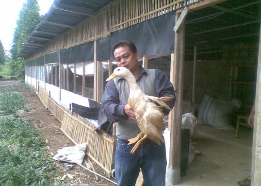 PT. Windu Raksa Jagat (Wiraga)