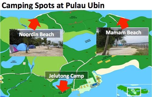 Camping Spots in PUlau Ubin